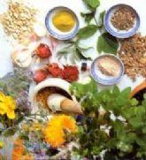 فروش عمده گیاهان دارویی